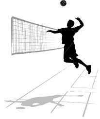 volley x