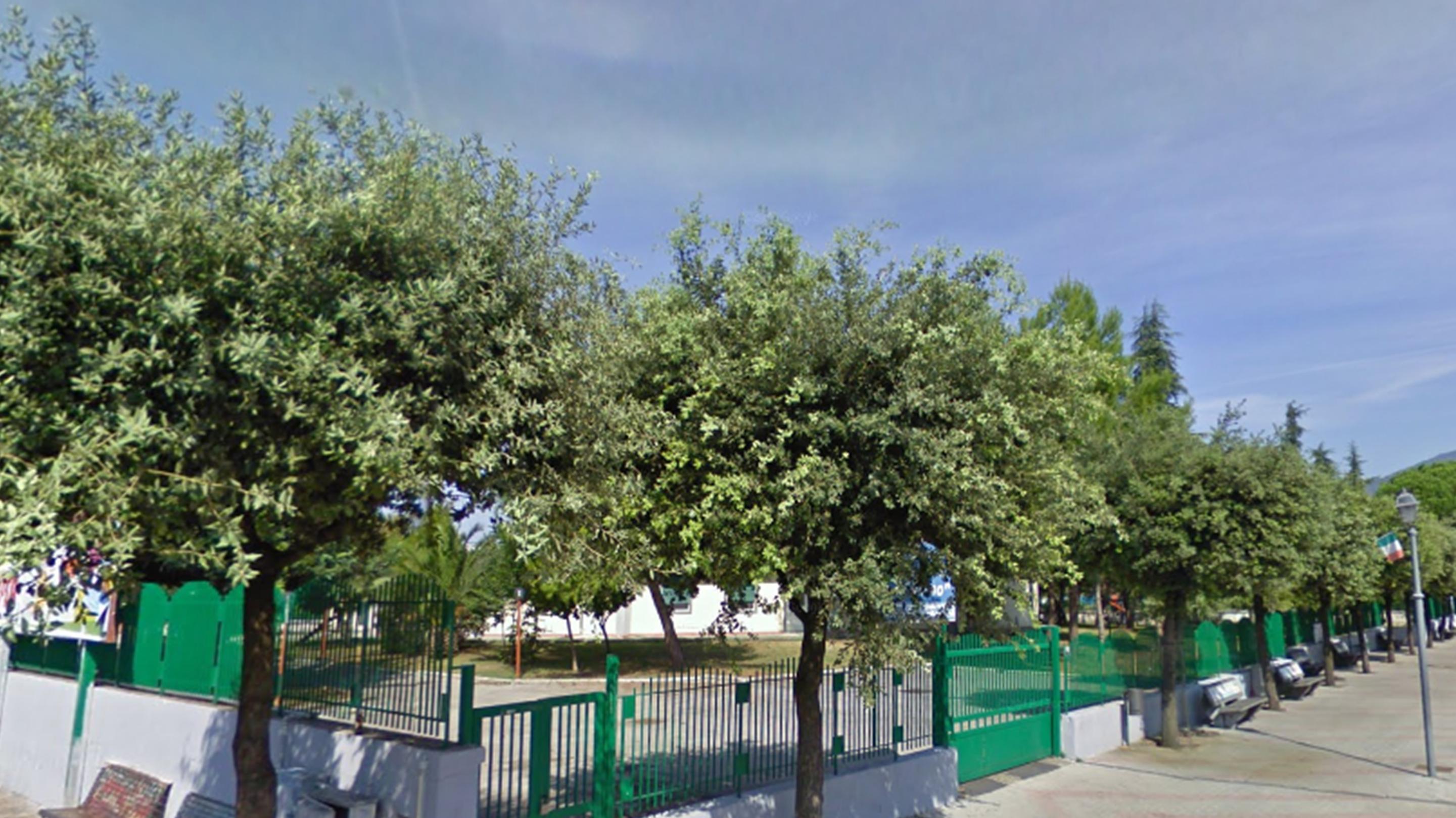 Alberi da giardino simple image with alberi da giardino un grande giardino con alberi palme - Alberi particolari da giardino ...