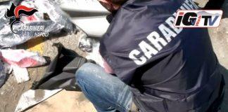moto rubate africa carabinieri
