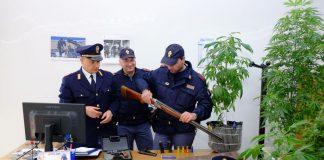 grumo nevano marijuana armi
