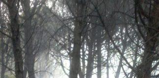 vesuvio incendio