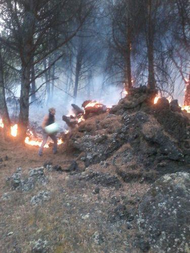 vesuvio fiamme soccorsi (9)