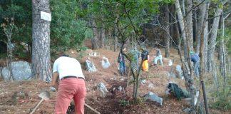 lavori manutenzione boschiva (2)