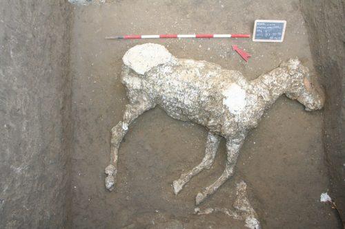 Scavi di Pompei - area Civita Giuliana